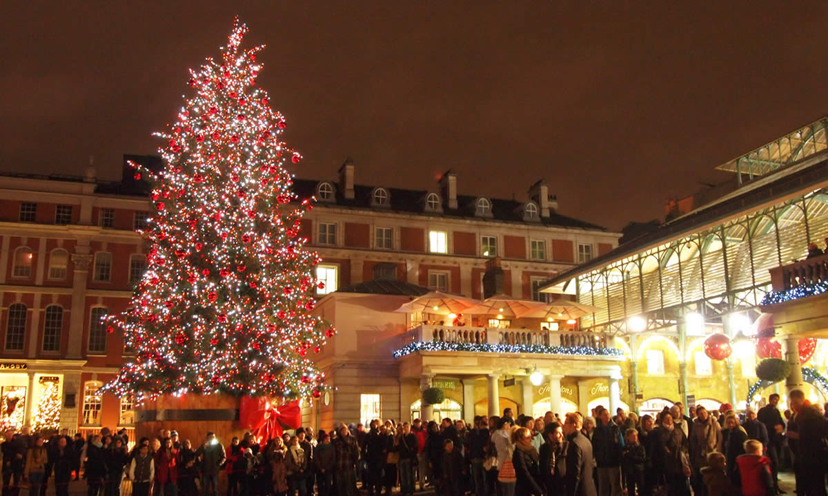 Christmas Tree Livingprops Co Uk