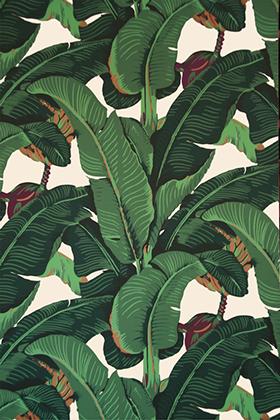 Martinique 3 Martinque Wallpaper