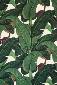 martinque wallpaper